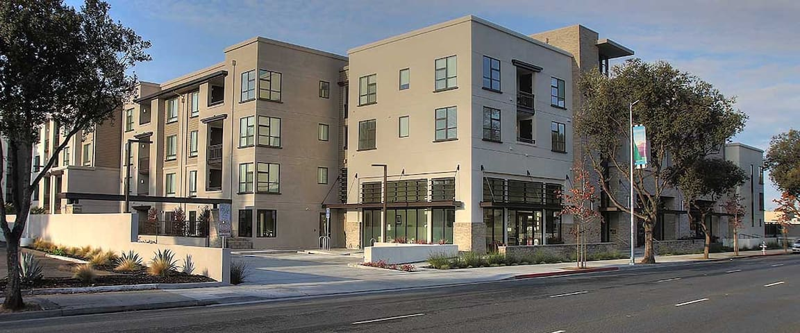 Modern mid-rise 1 bedroom in Mt View
