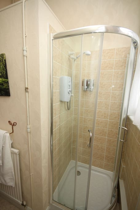 en suite shower room-room 10