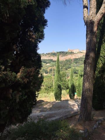 SPLENDIDO CASALE NEL VERDE - Perugia