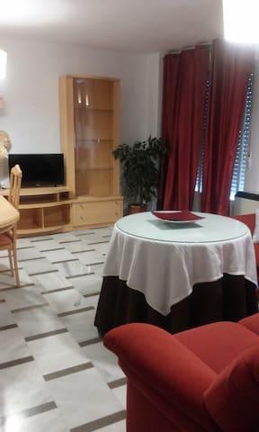 piso céntrico y tranquilo - Armilla - Apartment