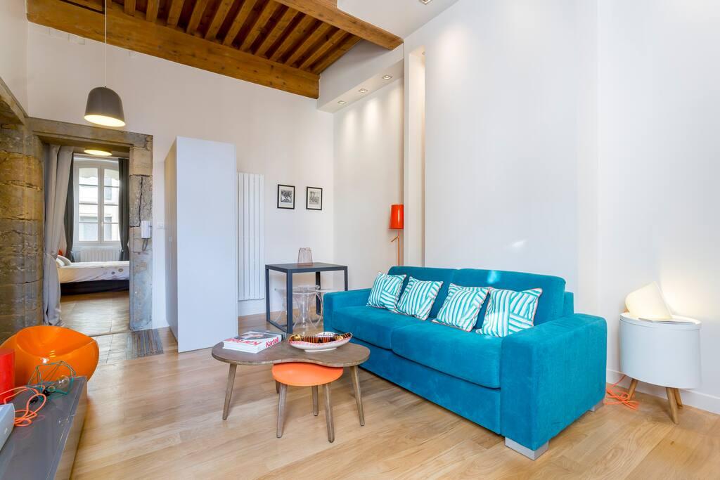 L 39 annexe sathonay lyon 1 57m2 cosy design for Appartement design lyon