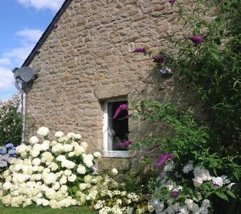 Kergadou, modernised Breton cottage - Langonnet  - House - 1