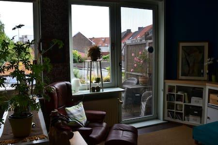 zonnig verblijf met dakterras - Gent - Řadový dům