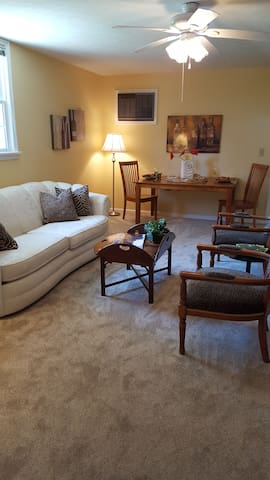 Spacious Apt for Kentucky Derby - Louisville - Apartment