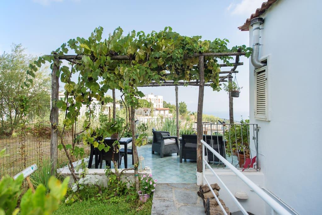 Giardino, pergolato d'uva e terrazzo panoramico a livello ad uso esclusivo