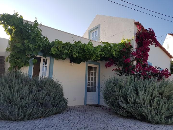 "Casa Azul... ""La maison bleue"""