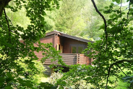Cosy log cabin in great woodland setting - Corris