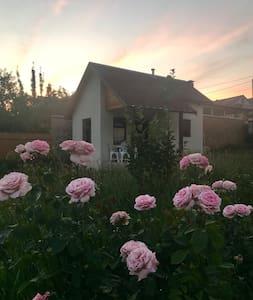 Уютный минидом в окрестностях Кисловодска