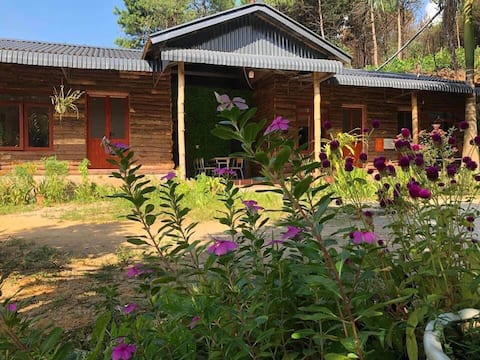 Amazing room homestay FREE 1 motorbike for rent
