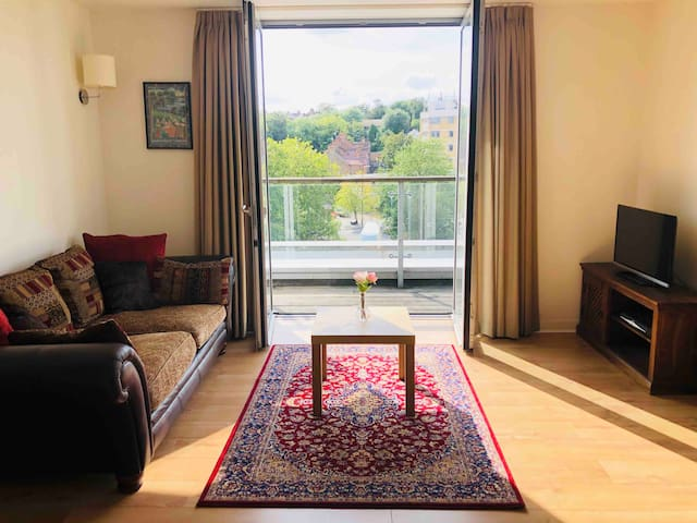 Unique top floor apartment in Wembley Park