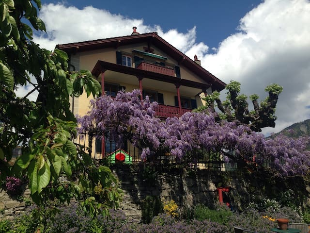 Historic Anatoly House Flat: View Lake Geneva/Alps - Saint-Légier-La Chiésaz