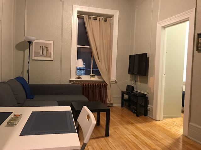 Hidden Gem ! Downtown ! Clean ! With a Cozy Touch! - Ottawa - Apartamento