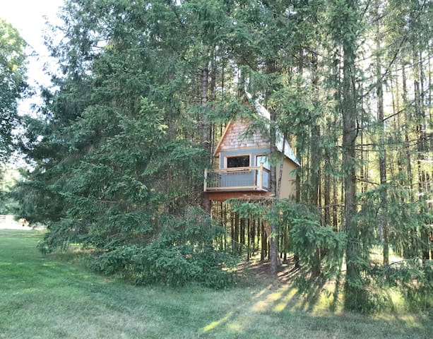 Unique Tree house nestled in the woods