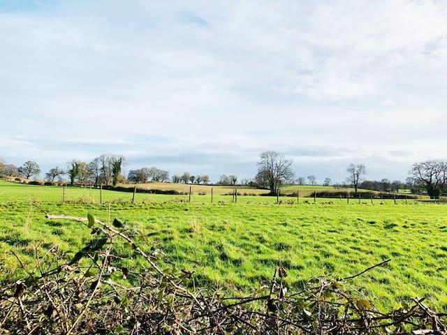 Peaceful Irish countryside