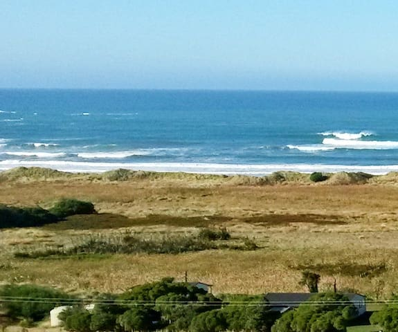Wairarapa Coastal NZ
