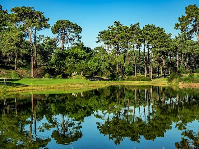 Inspiring Lisbon Golf&Beach Duplex Flat