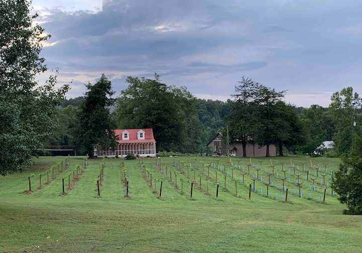 Charming Farmhouse Nestled in a Private Vineyard
