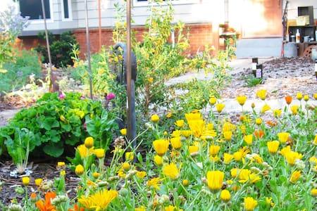 Eco Garden House - 费尔奥克斯(Fair Oaks) - 独立屋