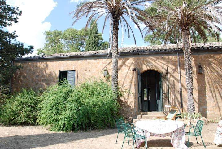 Sicily Hops House