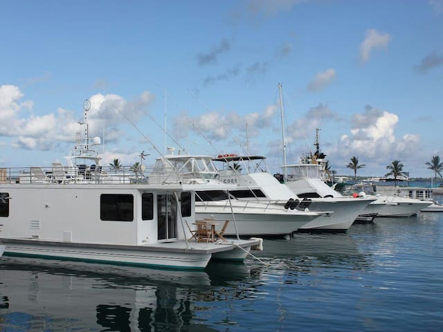 House Boat Cool Breeze Bermuda - Dockyard - Tekne