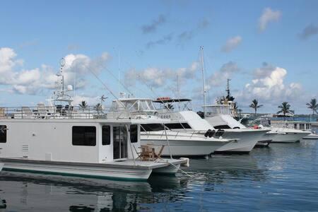 House Boat Cool Breeze Bermuda - Dockyard - Łódź