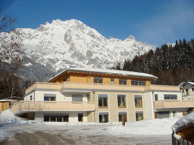 Apartment Bahnwirt  in Leogang - Leogang - Byt