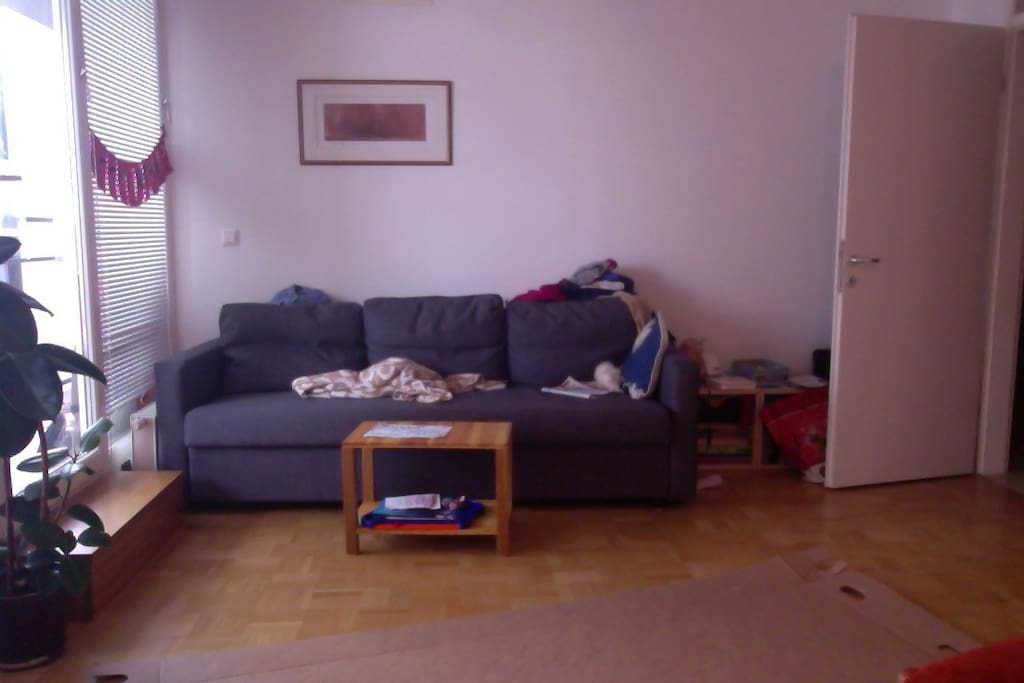 Livingroom. We will tidy it up  The couch extends into a bed.