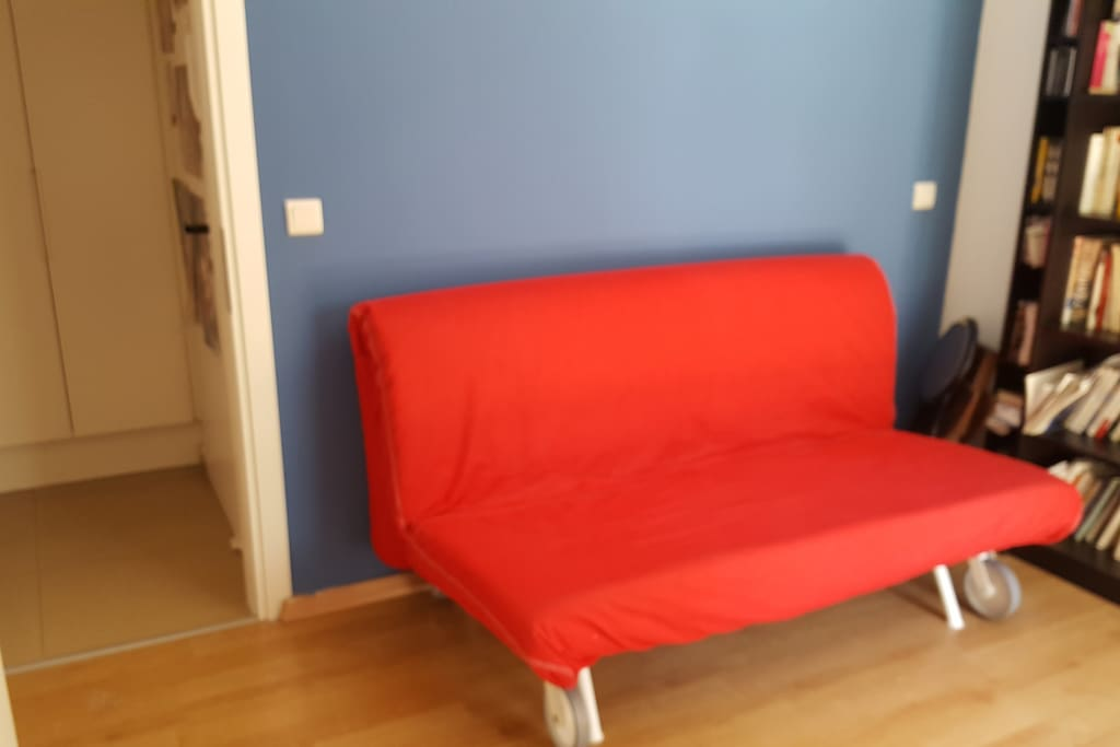 Spare room with convertible sofa