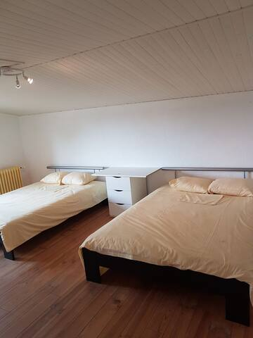 Large private room, 2 double beds. - Thoiry - Haus