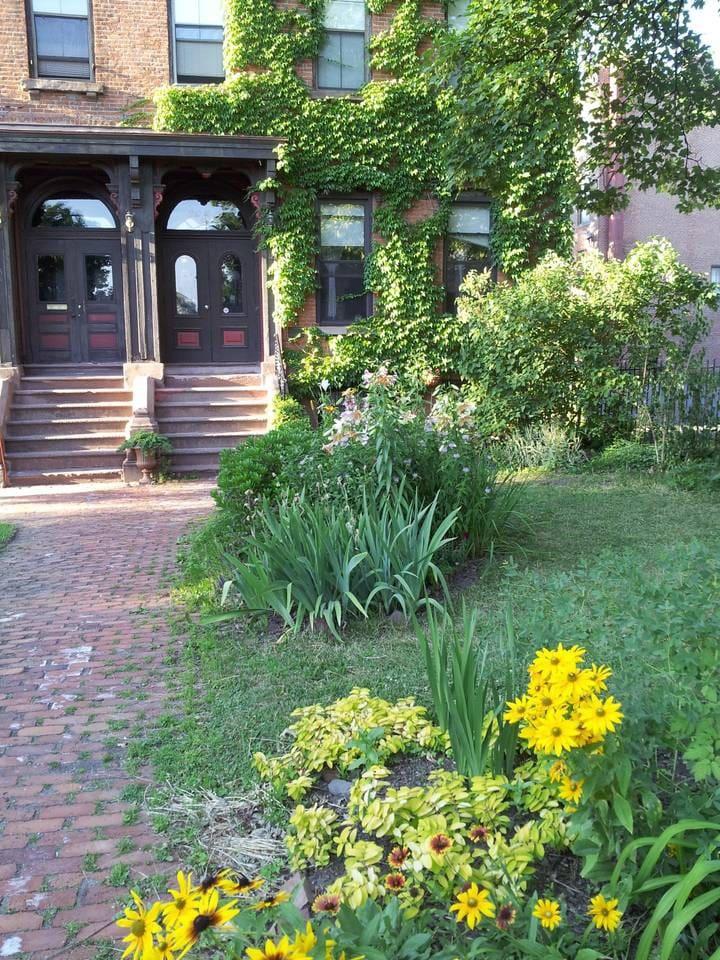 Front walk and yard.