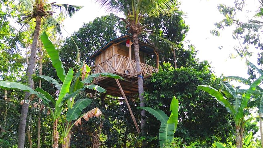 Nyuh Bengkok Tree House - Nusapenida