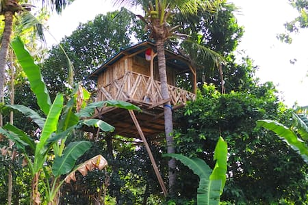 Rumah Pohon - Nusapenida - Treehouse