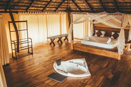 Yala Luxury Camp by Ajith Safaris - All Inclusive