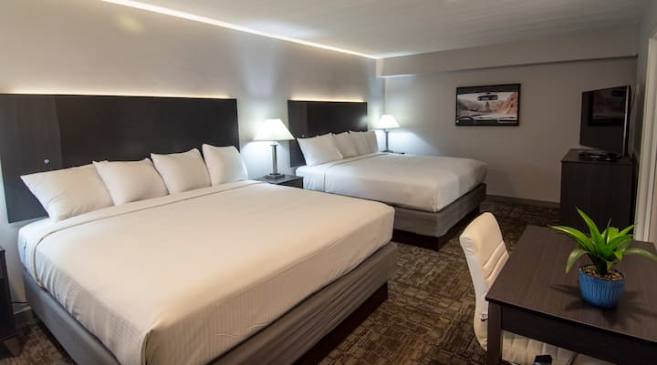 Americana Modern Hotel, DBL King
