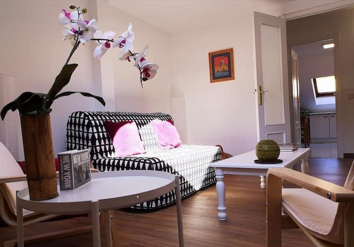 Apartamento céntrico, amplio y luminoso.