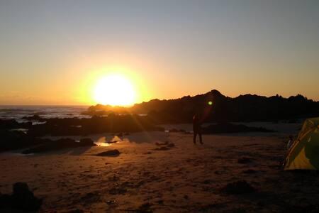 Cabaña en playa La Ballena,cariño de hogar,comidas