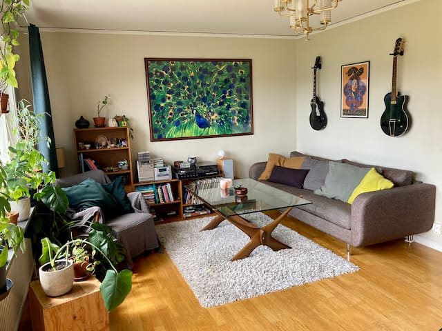 Bright living room with big south facing windows