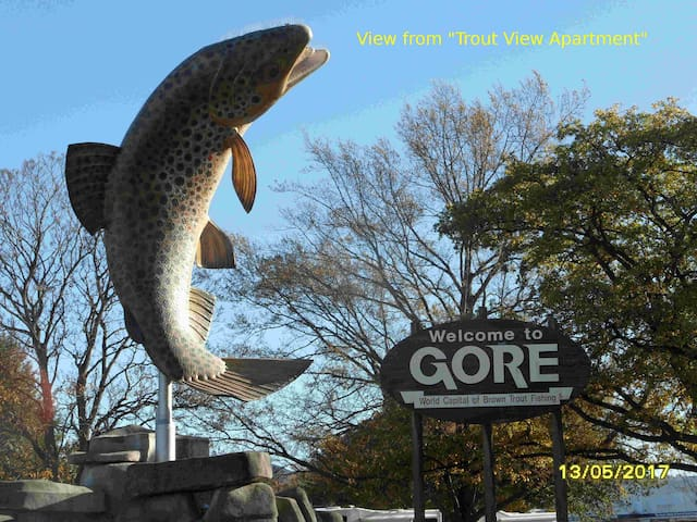 Trout View Apartment - Gore