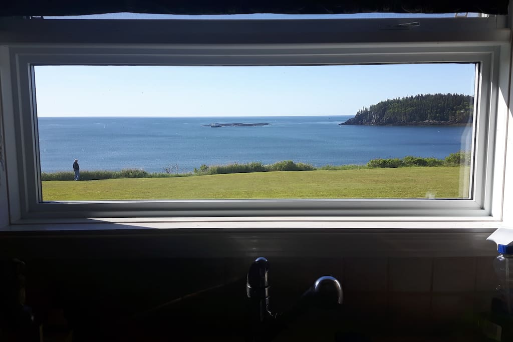 View from the kitchen sink.