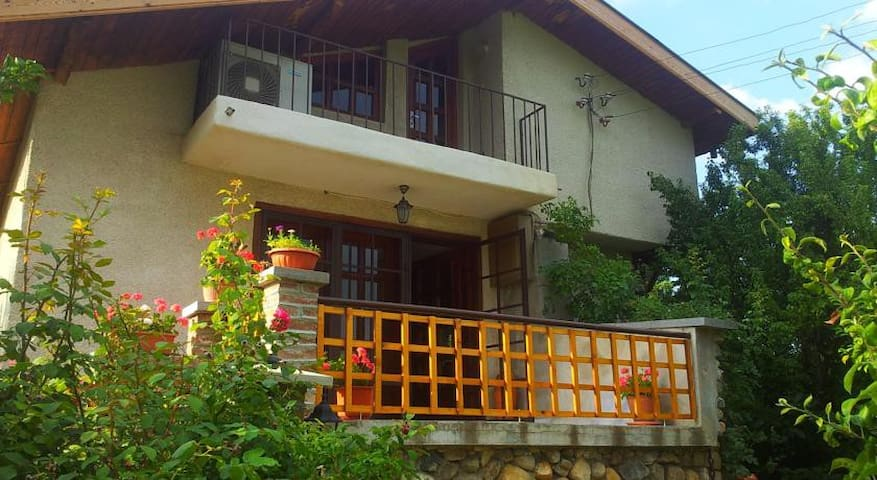 The 1st & Luxury Guest House Casa Rosa, Kyustendil