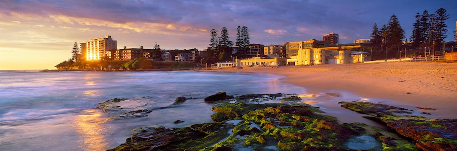 Entire 2Bed Apartment - Cronulla - Huoneisto