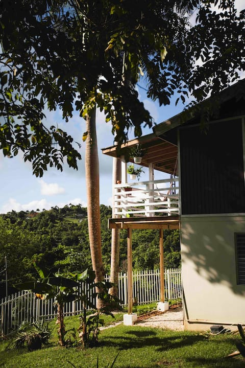 Vista verde house's