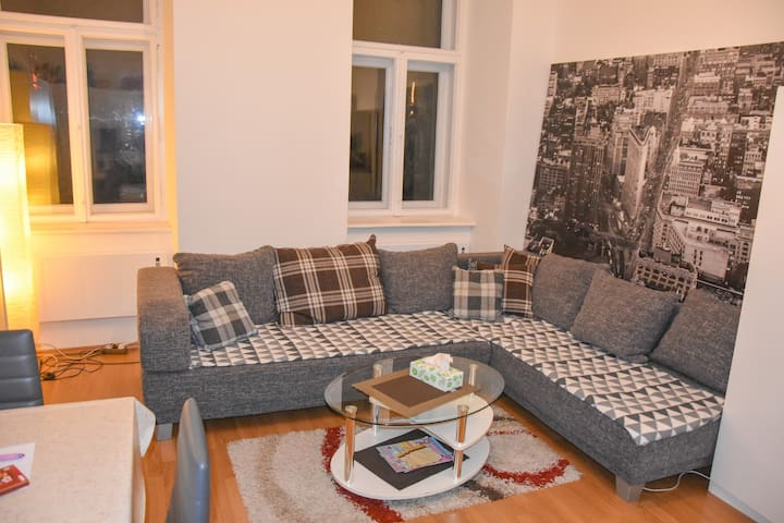 Big Modern Apartment at City Centre (Prater Park)