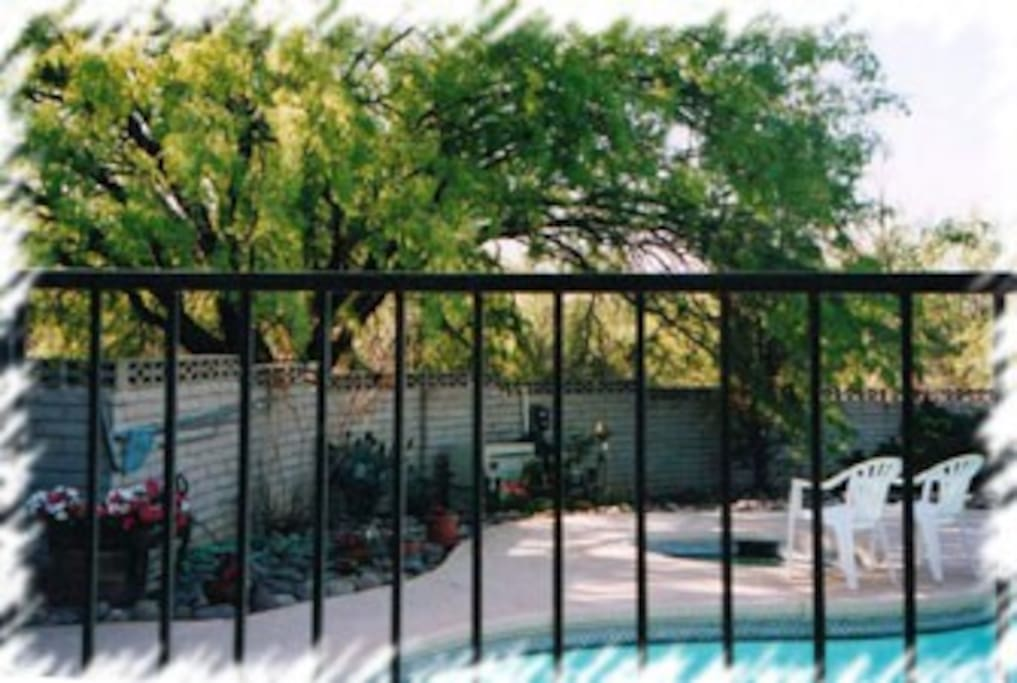 Pool hot tub area (Safety fence between  walled patio & pool/hot tub area.)