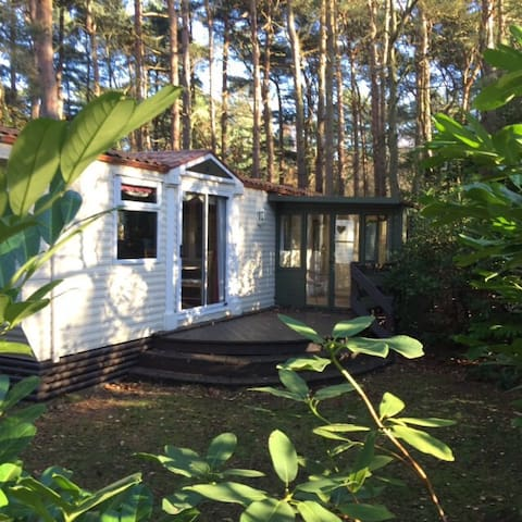 Secluded caravan in the woodland at Kelling Heath