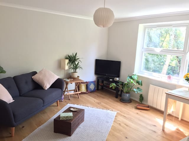 Quiet flat near Syon Park and the Thames w parking