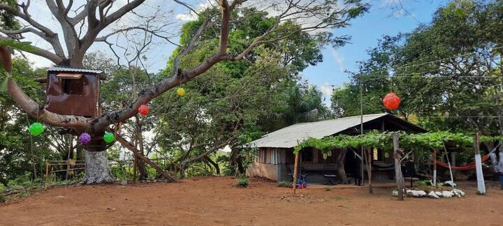 Cabaña San Pedro