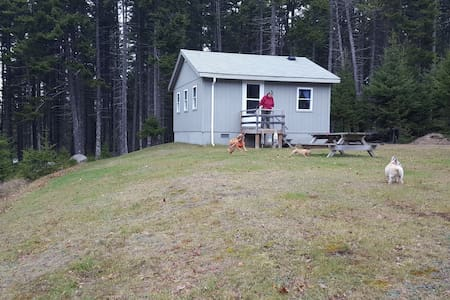 Quaint Oceanfront Cottage in Milbridge ME - Milbridge - Bungalow
