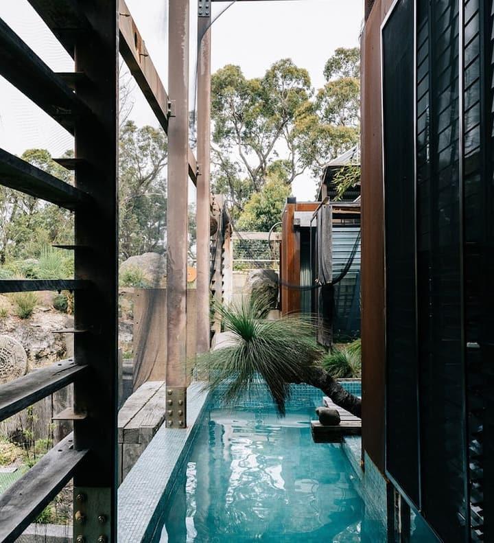 "Grand Designs Property ""Eco Bush Retreat"""