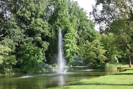 Wohnen im Grünen in Bad Bellingen beim Kurpark - Bad Bellingen - Lejlighed